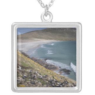 Collier Les Îles Falkland, les Malouines occidentales,