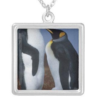 Collier Les Îles Falkland. Support de deux pingouins de