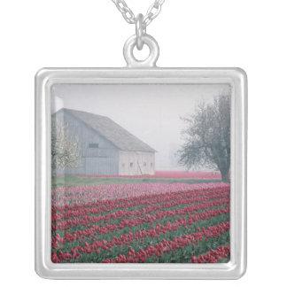 Collier Les tulipes rouges et roses saluent le jour sur un