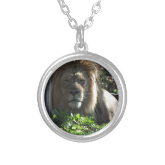 Collier Lion africain