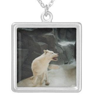 Collier Loup blanc
