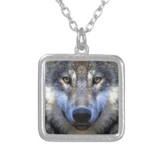 Collier Loup gris