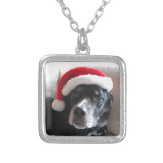 Collier Mélange de rottweiler de Père Noël Chien-Labrador