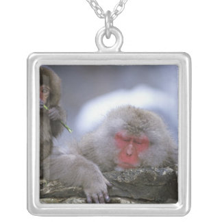 Collier Mère de singe de neige et enfant, Jigokudani,