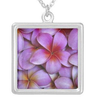 Collier N.A., Etats-Unis, Maui, Hawaï. Fleurs roses de