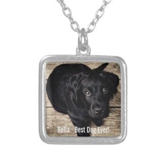 Collier Nom noir personnalisé de photo de chien de