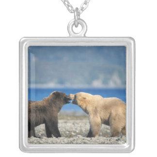 Collier Ours de Brown, ours gris, jeu sur la plage,
