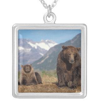 Collier Ours de Brown, ours gris, truie avec l'petit