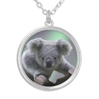 Collier Ours de koala