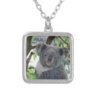 Collier Ours de koala dans un arbre