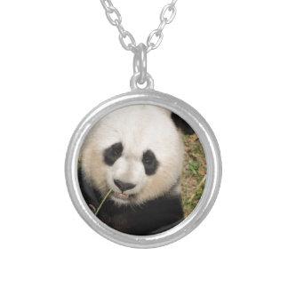 Collier Ours panda géant mignon
