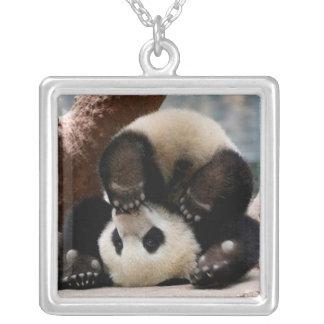 Collier Pandas de bébé jouant - panda mignon de panda de