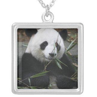 Collier Pandas géants à la protection de panda géant et