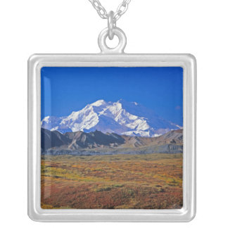 Collier Parc national du mont McKinley Denali, Alaska
