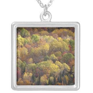 Collier Paysage d'automne, Vermont, Etats-Unis 2