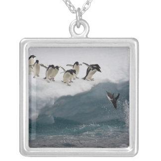 Collier Pingouins d'Adelie plongeant dans la mer Paulette
