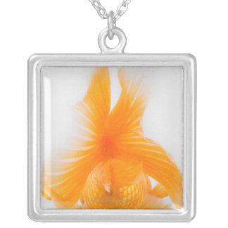 Collier Poisson rouge orange de lionhead (auratus de