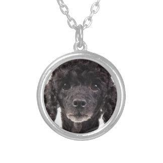 Collier Portrait d'un caniche noir