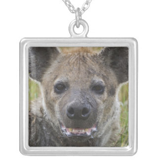 Collier Portrait repéré d'hyène, croduta de Crocuta, masai