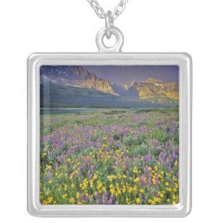 Collier Pré des fleurs sauvages dans les nombreux glacier