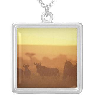 Collier Réservation de jeu du Kenya, Mara de masai,