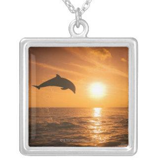 Collier Sauter de dauphin de Bottlenose