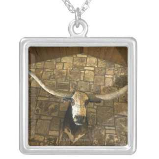 Collier Tête de boeuf de longhorn montée sur le mur