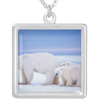Collier Truie d'ours blanc avec des petits animaux sur la