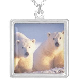 Collier Truie d'ours blanc avec l'petit animal sur la