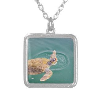 Collier Un grand Caretta de tortue de mer de natation