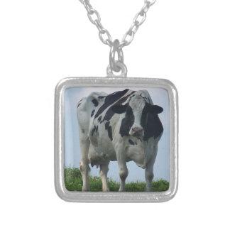 Collier Vache laitière noire et blanche du Vermont