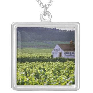 Collier Vignoble de grand cru de Chambertin Clos de Beze