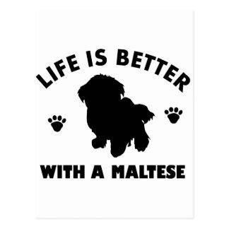 Conception de chien maltais cartes postales