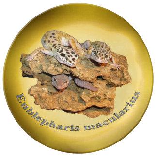 Conception de gecko de léopard pour tous ! assiette en porcelaine