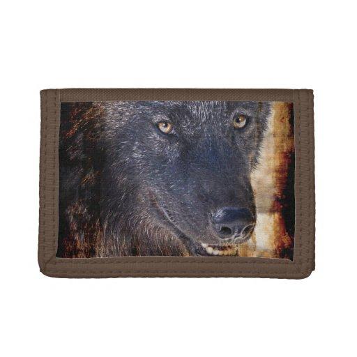 Conception de photo de faune de loup gris