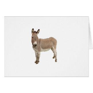 Conception de photographie d'âne carte de vœux
