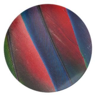 Conception de plume de perroquet d'Amazone Assiette