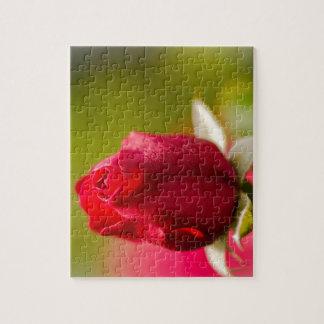 Conception haute de fin de rose rouge puzzle