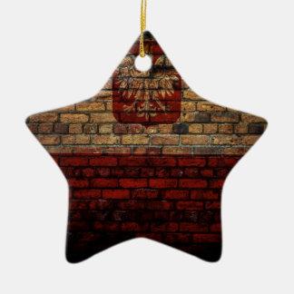 Conception polonaise de mur de briques de drapeau ornement étoile en céramique