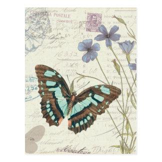 Contes de Papillon Carte Postale