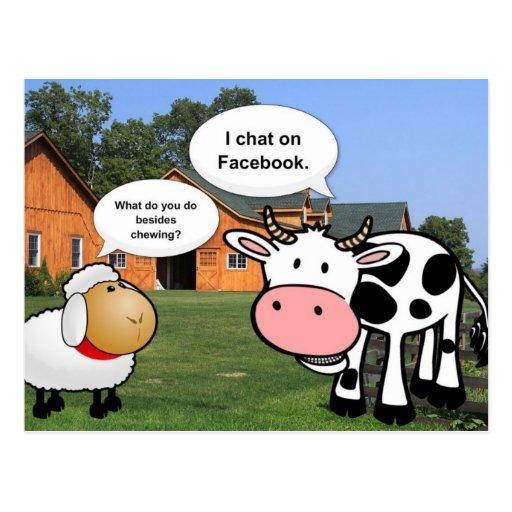 Conversation drôle de facebook de bande dessinée m carte postale