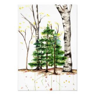 copie d'arbres d'aquarelle impression photo