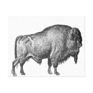 Copie d'art de toile de Buffalo de bison