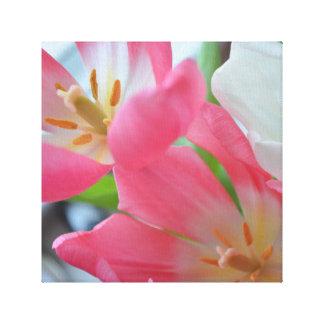 Copie de beaux-arts de tulipes toiles