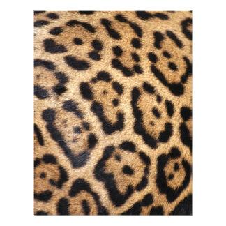 Copie de photo de fourrure de Jaguar Prospectus 21,6 Cm X 24,94 Cm