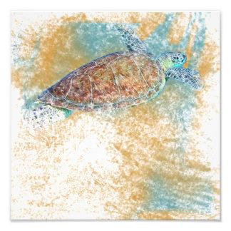 Copie de photo de l'art | de tortue de mer