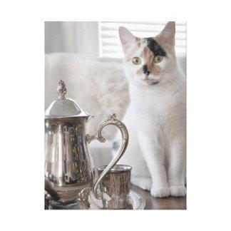 Copie de photographie de toile de thé de chaton