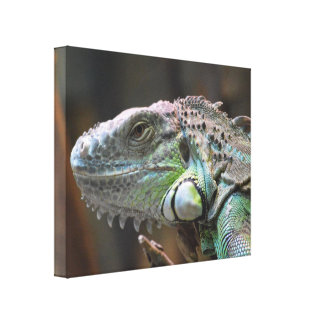 Copie de toile avec la tête du lézard coloré