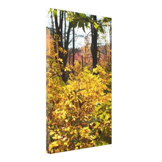 Copie de toile enveloppée par feuillage d'automne