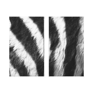 Copie de zèbre dans les copies noires et blanches toiles